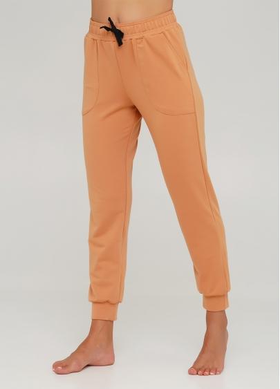 Бавовняні спортивні штани SPORT PANTS 4301/010 (карамельний)
