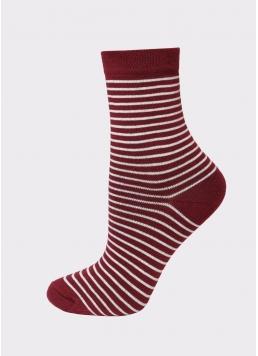 Комплект жіночих шкарпеток WS3 CLASSIC + WS BASIC 002 Giulia